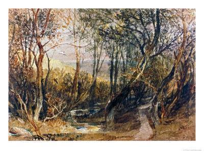 Woodland Scene, circa 1810, Watercolour on Paper
