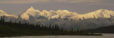 Moose Standing on a Frozen Lake, Wonder Lake, Denali National Park, Alaska, USA