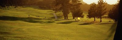 Golf Flag on Presidio Golf Course, San Francisco, California, USA