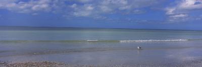 Waves on the Beach, Crescent Beach, Gulf of Mexico, Siesta Key, Florida, USA