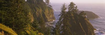 Trees on Rocks, Pacific Ocean, Boardman State Park, Oregon, USA