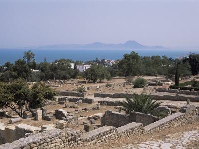 Remains of Roman Villas, Carthage, Unesco World Heritage Site, Tunisia, North Africa, Africa