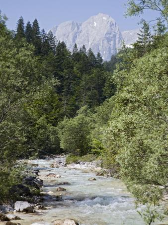 Bistrica River and Forest with Stenar Mountain Beyond in Summer, Triglav National Park, Mojstrana