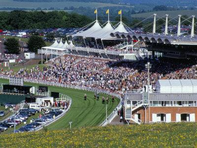 Horses Racing and Crowds, Goodwood Racecourse, West Sussex, England, United Kingdom
