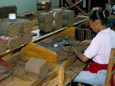 Leon Jimenes Cigar Factory, Town of Santiago, Saint Domingue (Santo Domingo), Dominican Republic