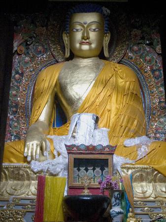 Buddha, Mindroling Monastery, Tibet, China