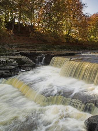 Lower Aysgarth Falls and Autumn Colours Near Hawes, Yorkshire Dales National Park, Yorkshire