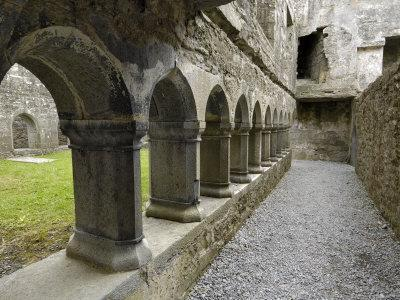 Cloister, Ross Errilly Franciscan Friary, Near Headford, County Galway, Connacht, Ireland