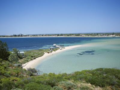 Protected Bird Sanctuary, Penguin Island, Western Australia, Australia