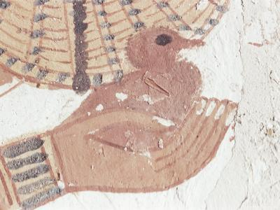 Wall Painting of Bird in Hand in Tomb of Nakht, Valley of Nobles, UNESCO World Heritage Site