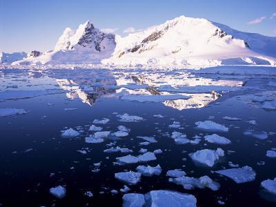 West Coast, Antarctic Peninsula, Antarctica, Polar Regions