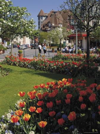 Flower Beds with Tulips in Town Centre, Deauville, Calvados, Normandy, France