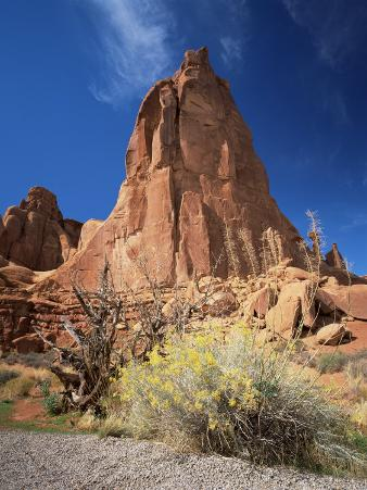 Sandstone Cliffs, Arches National Park, Moab, Utah, USA