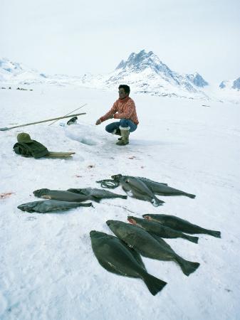 Inuit Man Fishing for Halibut, Greenland, Polar Regions