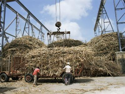 St. Andrew Sugar Factory, Barbados, West Indies, Caribbean, Central America