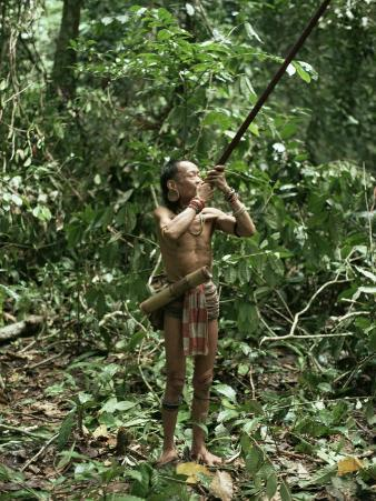 Member of the Penan Tribe with Blowpipe, Mulu Expedition, Sarawak, Island of Borneo, Malaysia
