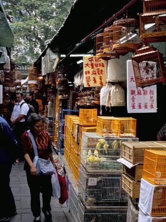 Yuen Po Street Bird Garden, Mong Kok, Kowloon, Hong Kong, China