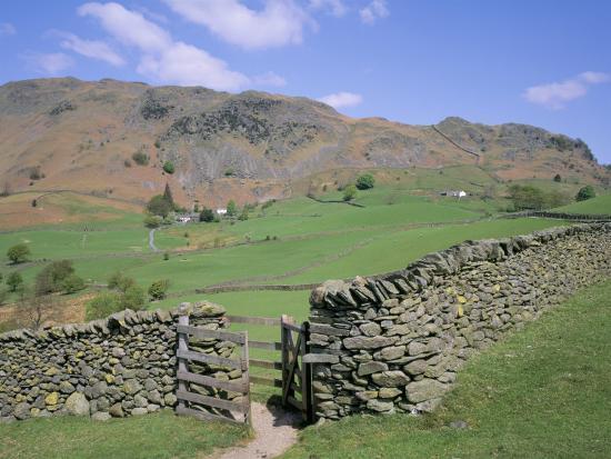 Stone Wall Fields And Lingmoor Fell Little Langdale