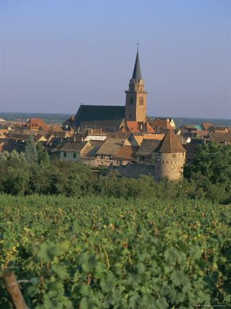 Bergheim and Vineyards, Alsace, France