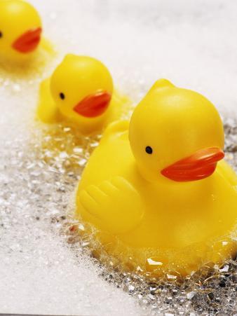 Rubber Ducks in Bath