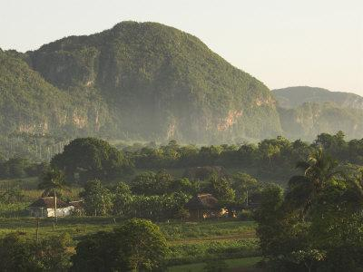 Fertile Plain with Little Farm and Typical Haystack Hills, UNESCO World Heritage Site, Cuba