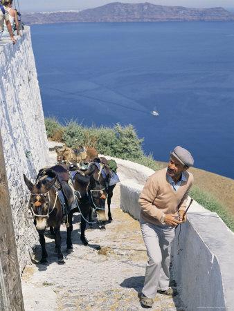 Animal Transport, Santorini (Thira), Cyclades Islands, Greek Islands, Greece