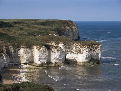 Flamborough Head, East Yorkshire, Yorkshire, England, United Kingdom