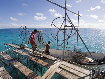 Hinano Black Pearl Farm, Fakarawa, Tuamotu Archipelago, French Polynesia Islands