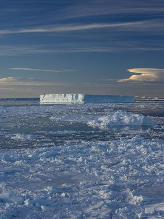 Iceberg and Pack Ice, Weddell Sea, Antarctic Peninsula, Antarctica, Polar Regions