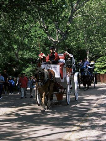 Horse Drawn Carriage in Central Park, Manhattan, New York, New York State, USA