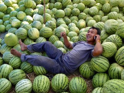 A Man Talks on His Phone Under the Shade of His Watermelon Stall, Savannakhet, Laos, Indochina