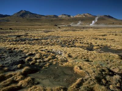 El Tatio Geyser, Atacama, Chile, South America
