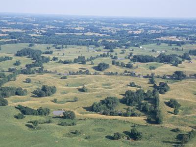 Sinkhole Plain, Polygonal Doline Karst, Near Mammoth Cave, Kentucky, USA