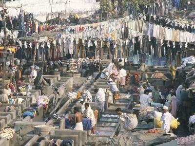 Municipal Laundry, Mahalaxmi Dhobi Ghat, Mumbai (Bombay), India