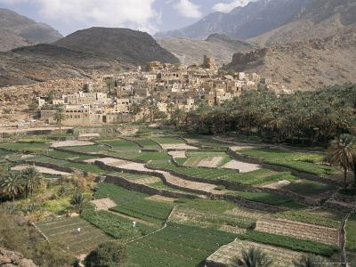 Traditional Jabali Village with Palmery in Basin in Jabal Akhdar, Bilad Sayt, Oman, Middle East