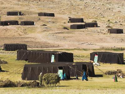 Aimaq Nomad Camp, Pal-Kotal-I-Guk, Between Chakhcharan and Jam, Afghanistan