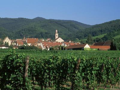 View to Village from Vineyards, Riquewihr, Haut-Rhin, Alsace, France