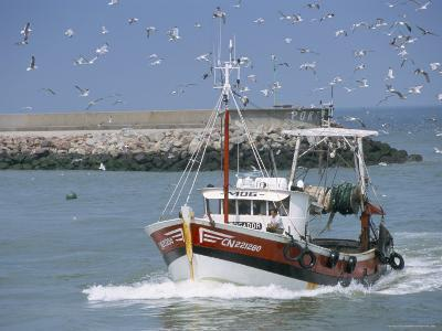 Fishing Boat Returning from Fishing, Deauville, Normandy, France