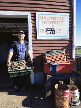 Dale Marchland Selling Malpeque Oysters, Malpeque, Prince Edward Island, Canada