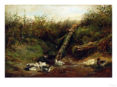 Ducks at a Brook, 1872