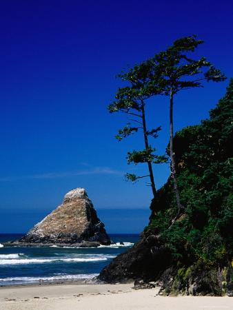 Rocky Outcrop at Heceta Head State Beach, Near Florence, Florence, Oregon
