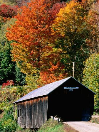 Autumn Leaves Surrounding Cilley Covered Bridge, Vermont