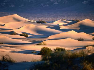 Stovepipe Wells Dunes, Death Valley National Park, California