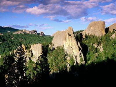 Rock Formations and Pine Forest, Black Hills, South Dakota