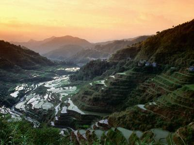 Rice Terraces, Ifugao Province, Luzon, Southern Tagalog, Philippines