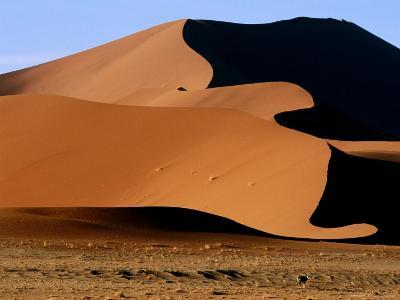 Oryx with Sand Dunes in Background, Namib Desert Park, Hardap, Namibia