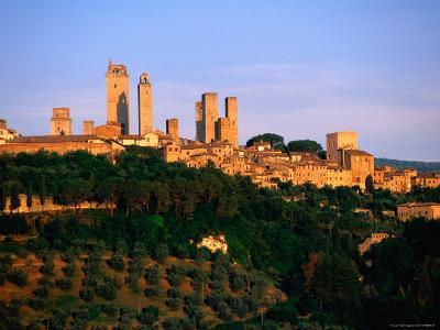 Trees and Buildings of Town at Sunrise, San Gimignano, Tuscany, Italy