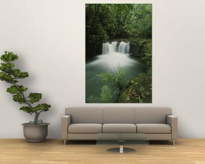 Rain Forest Waterfall, Costa Rica
