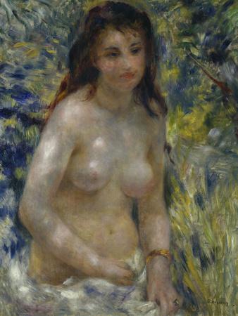 Female Nude in the Sun, c.1875