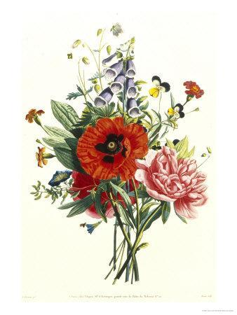 Bouquet of Foxglove, Poppy and Peonie